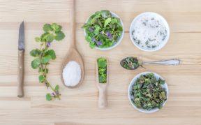 תרופות סבתא ודרכים טבעיות לטיפול בדלקות חניכיים במקביל לקבלת אבחון וטיפול רפואי. צילום: Pixabay scym